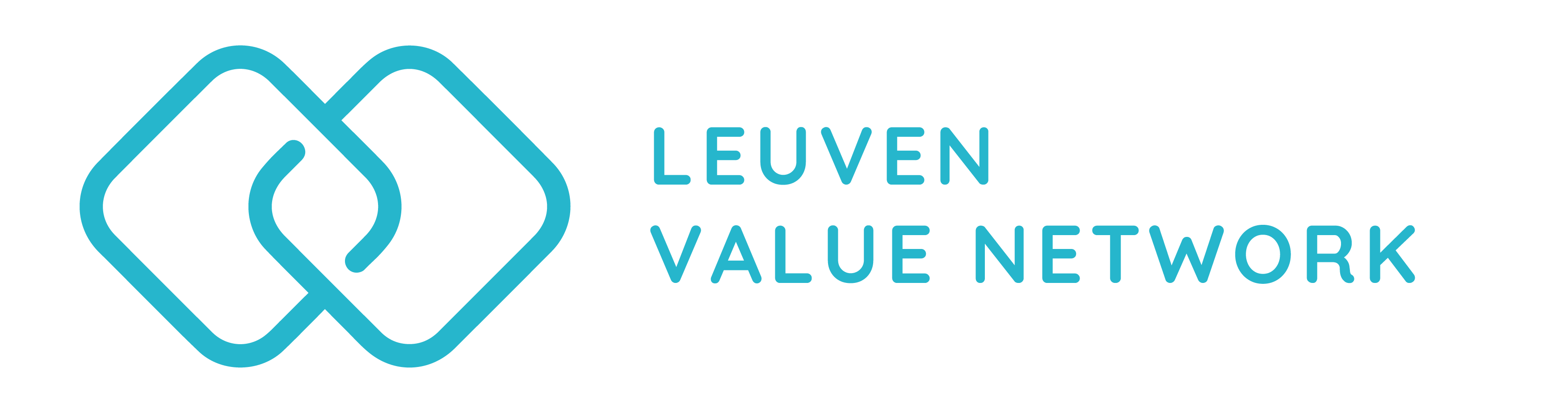 Logo Leuven Value Network